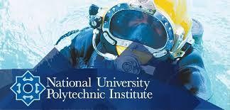National Polytechnic University Institute, Cameroon