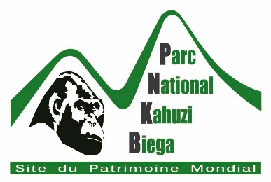Kahuzi Biega National Park, Kinshasa, Dem Rep of Congo