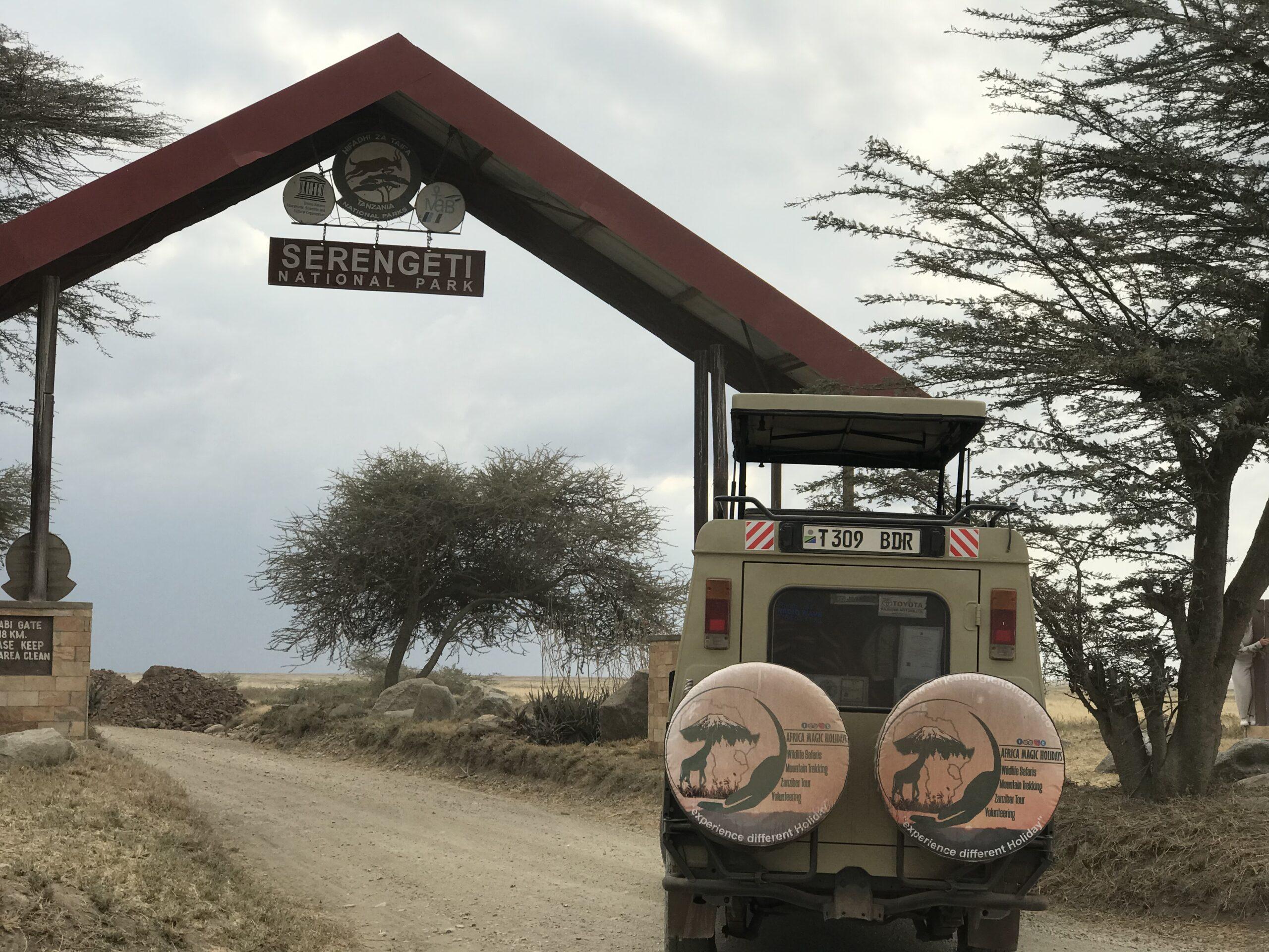 Africa Magic Holidays & Tours Ltd, Lazaro Mtui, Arusha, Tanzania